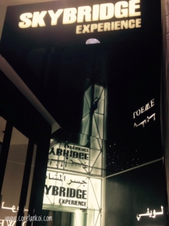 sky-bridge-experience