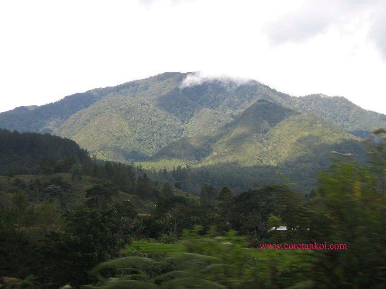 View sekitar Danau Toba